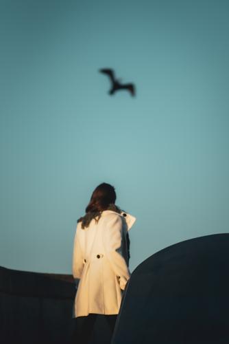 Surreale Aufnahme einer junge Frau in weißen Mantel die einen Kormoran beobachtet elegant Stil feminin Junge Frau Jugendliche 1 Mensch 18-30 Jahre Erwachsene