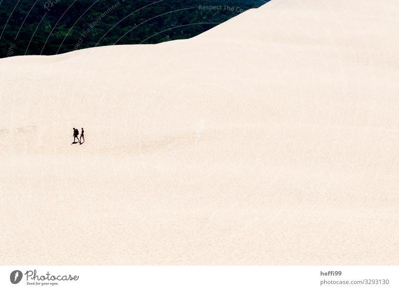 zwei Menschen wandern durch die Sanddüne 'Dune du Pilat' Tourismus Ausflug Abenteuer Expedition Sommer Sonne Berge u. Gebirge Partner 2 Schönes Wetter Wärme