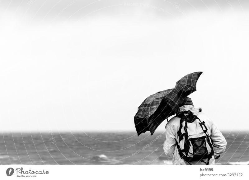 Mensch mit deformiertem Regenschirm bei schwerem Sturm Freizeit & Hobby Abenteuer Strand Meer wandern Erwachsene 1 Wasser Horizont Herbst Winter Klimawandel