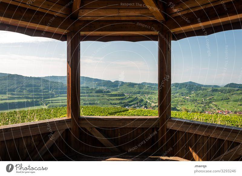 Ausblick auf den Kaiserstuhl Aussicht Natur Landschaft Sommer Hütte Holzhütte Freizeit & Hobby wandern Weinberg Erholung Pause