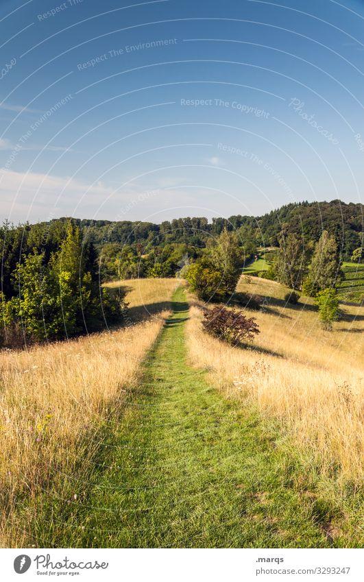 Pfad durch wunderwunderwunderwunderschöne Landschaft Wege & Pfade Trampelpfad Natur Erholung Wiese Ziel wandern Freizeit & Hobby Himmel Sommer