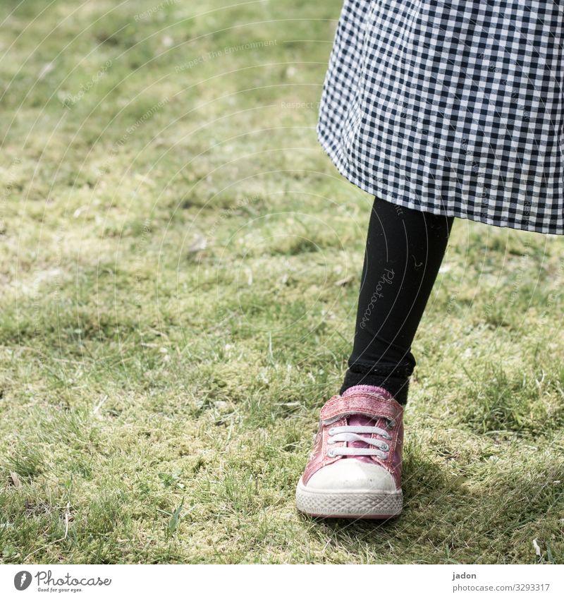der sinn der socke. Stil Beine Fuß 1 Mensch Natur Gras Wiese Rock Strümpfe Strumpfhose Turnschuh stehen schwarz Zufriedenheit kariert Farbfoto Außenaufnahme