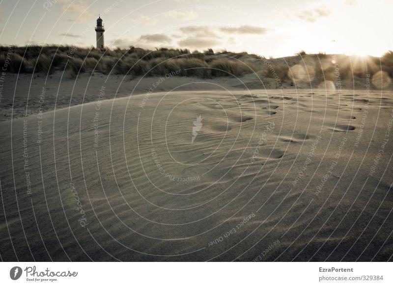 Spuren Ferien & Urlaub & Reisen Tourismus Sonne Strand Natur Landschaft Sand Himmel Wolken Sommer Herbst Pflanze Ostsee Fußspur Erholung genießen ästhetisch