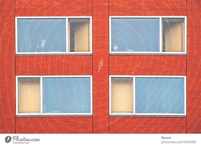 vier Fenster Fassade blau braun rot deutlich Klarheit einfach Ordnung Rechteck Linie Fensterfront Glas Glasscheibe Fensterscheibe Stadt Anordnung Farbfoto