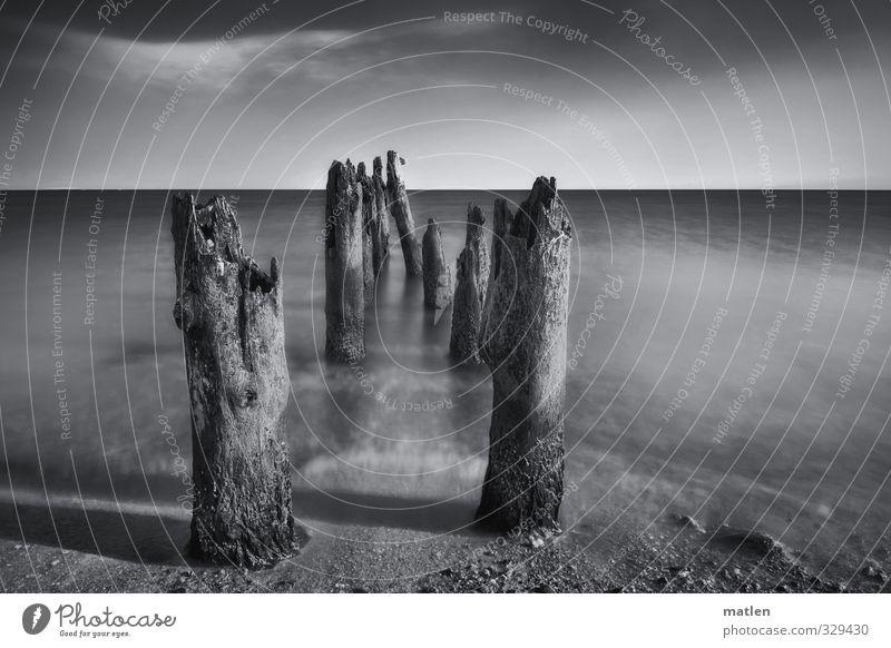 die letzte Kolonne Landschaft Sand Wasser Himmel Wolken Horizont Wetter Schönes Wetter Baum Küste Strand Meer schwarz weiß Wellenbrecher Buhne Schwarzweißfoto