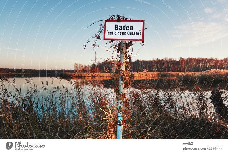 Vertrackt Umwelt Natur Landschaft Pflanze Wasser Himmel Horizont Herbst Schönes Wetter Baum Sträucher Wald See Schriftzeichen Schilder & Markierungen
