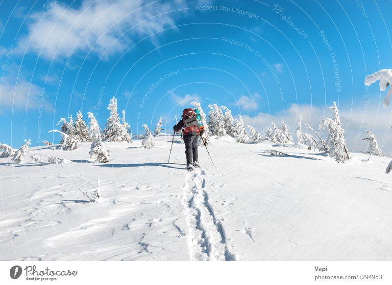 Mensch Himmel Ferien & Urlaub & Reisen Natur Jugendliche Mann blau weiß Landschaft rot Baum Wolken Einsamkeit Wald Winter Berge u. Gebirge