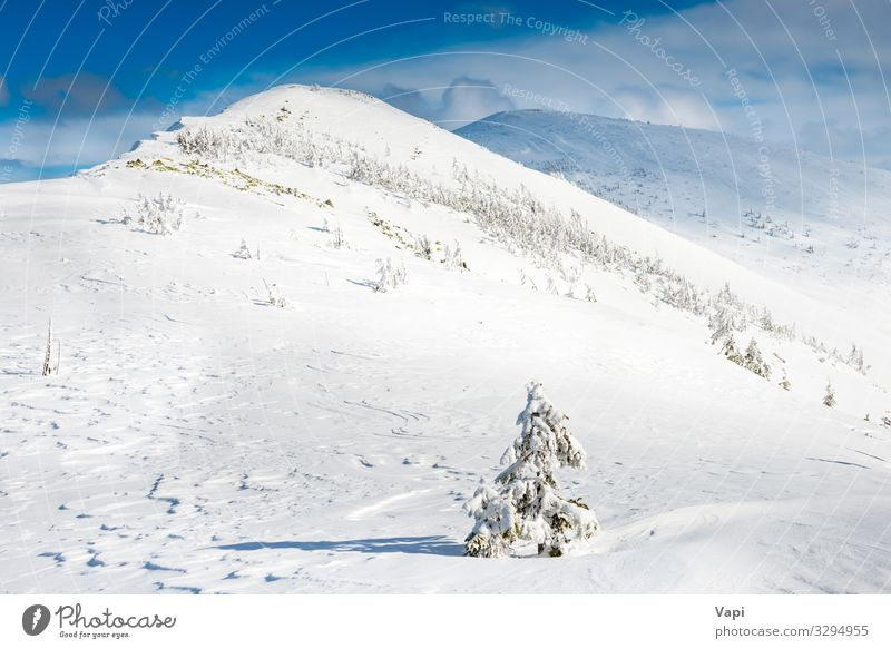 Winterlandschaft in den Bergen schön Ferien & Urlaub & Reisen Sonne Schnee Winterurlaub Berge u. Gebirge wandern Weihnachten & Advent Umwelt Natur Landschaft