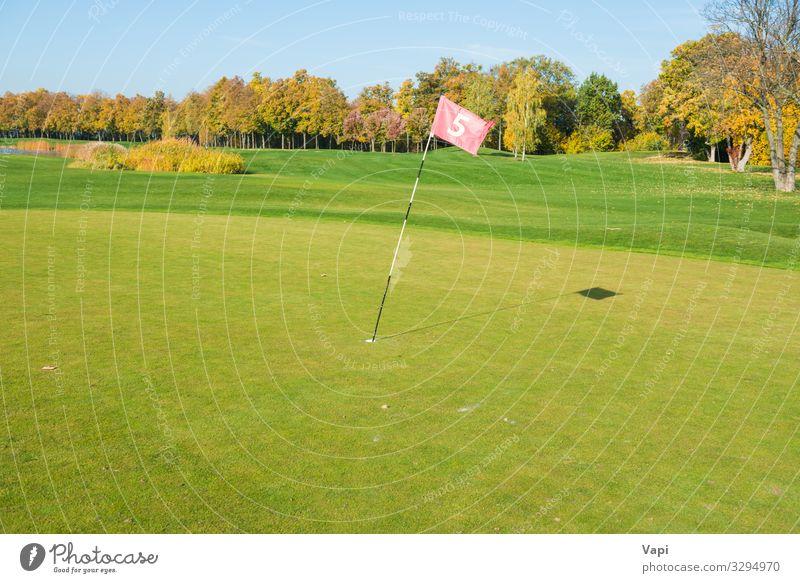 Golfflagge in der Nähe der Falle Lifestyle Freizeit & Hobby Spielen Minigolf Sommer Club Disco Sport Golfplatz Natur Landschaft Pflanze Himmel Sonnenaufgang