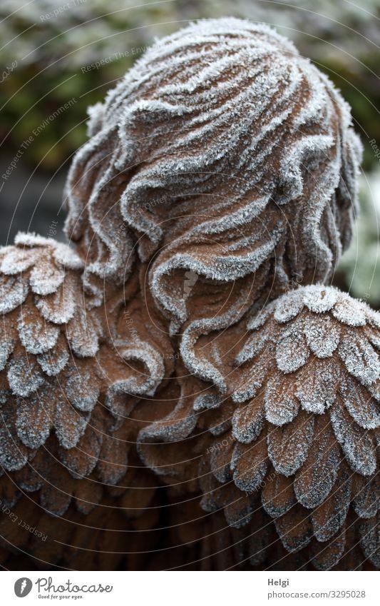 Rückansicht eines Engels mit Raureif an Haaren und Flügeln Winter Eis Frost Dekoration & Verzierung Haare & Frisuren Zeichen frieren stehen außergewöhnlich