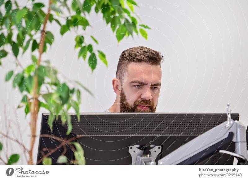 Bärtiger Mann arbeitet hinter Computermonitor in modernen Büro mit Haus natürlichen ficus Lifestyle Design Schreibtisch Tisch Arbeit & Erwerbstätigkeit