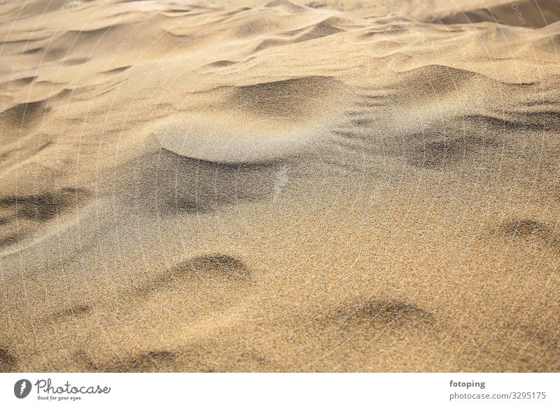Maspalomas Ferien & Urlaub & Reisen Tourismus Ausflug Strand Insel Natur Landschaft Sand Wind Wüste Sehenswürdigkeit trocken Ausflugsziel Düne Dünen Europa