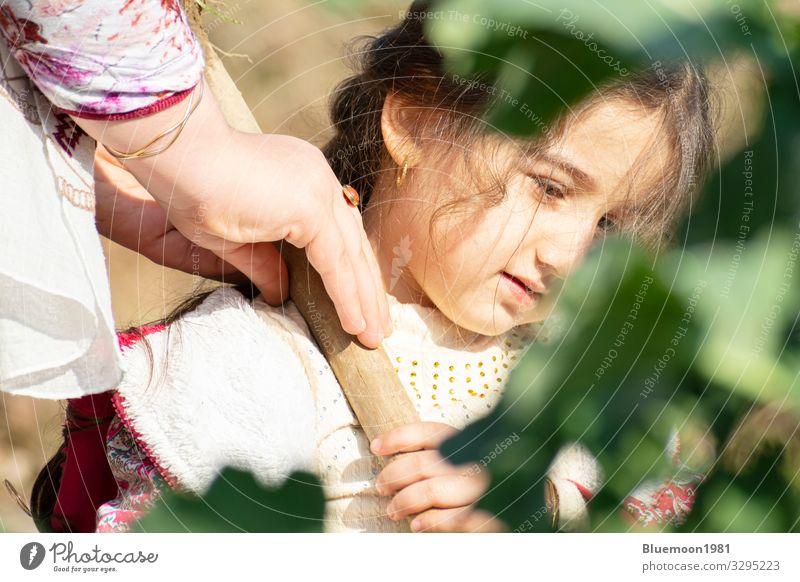 Kind Mensch Natur Pflanze schön grün Erholung Einsamkeit Blatt ruhig Freude Mädchen Gesundheit Lifestyle Holz Leben