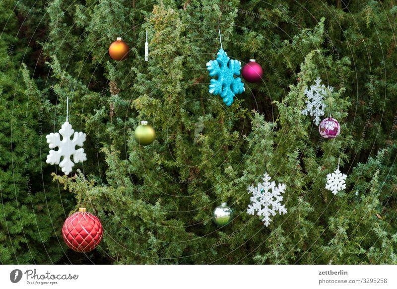Weihnachtsdekoration Weihnachten & Advent Stern (Symbol) Schneeflocke Dekoration & Verzierung Schmuck Baumschmuck Tanne Fichte Kiefer Weihnachtsbaum