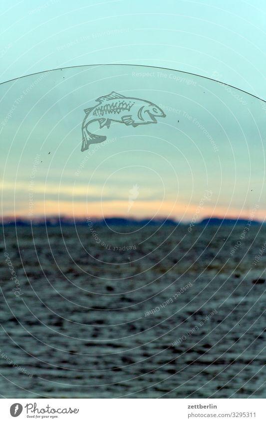 Fisch an der Ostsee altenkirchen Dorf Fischerdorf Insel Küste Landschaft Mecklenburg-Vorpommern Meer Nebensaison Ostseeinsel Rügen Ferien & Urlaub & Reisen