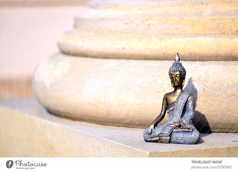 Säulenheiliger! Lifestyle Freude Glück Gesundheitswesen Alternativmedizin Gesunde Ernährung Wellness Leben harmonisch Wohlgefühl Erholung ruhig Meditation