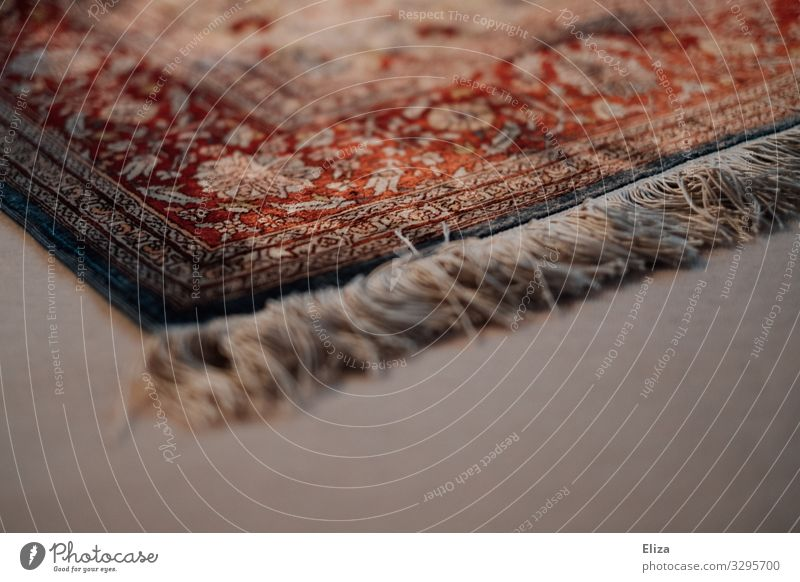 Stolperfalle Teppich Teppichfranse Häusliches Leben gemütlich Bodenbelag Muster Ornament ornamental Franse Fransenteppich Farbfoto Innenaufnahme Menschenleer