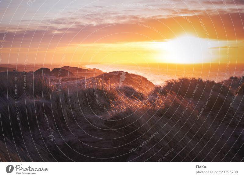 Wintersonne über der Jammerbucht Himmel Ferien & Urlaub & Reisen Natur schön Landschaft Sonne Meer Ferne Strand gelb Umwelt Küste Tourismus Freiheit orange