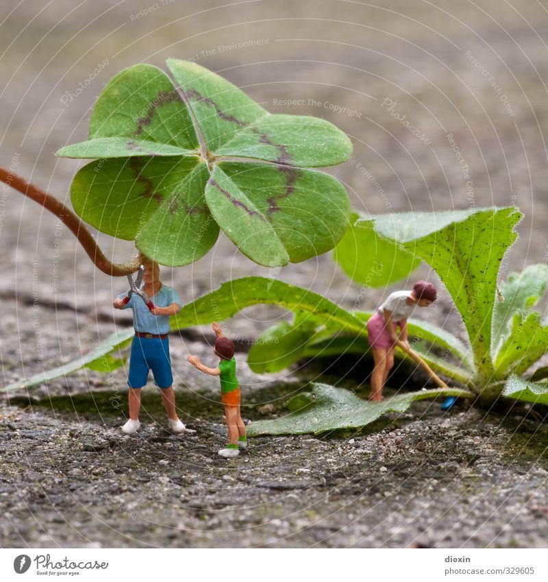 we´re a happy family Kind Frau Erwachsene Mann Eltern Mutter Vater Familie & Verwandtschaft 3 Mensch Pflanze Blatt Grünpflanze Klee Kleeblatt vierblättrig