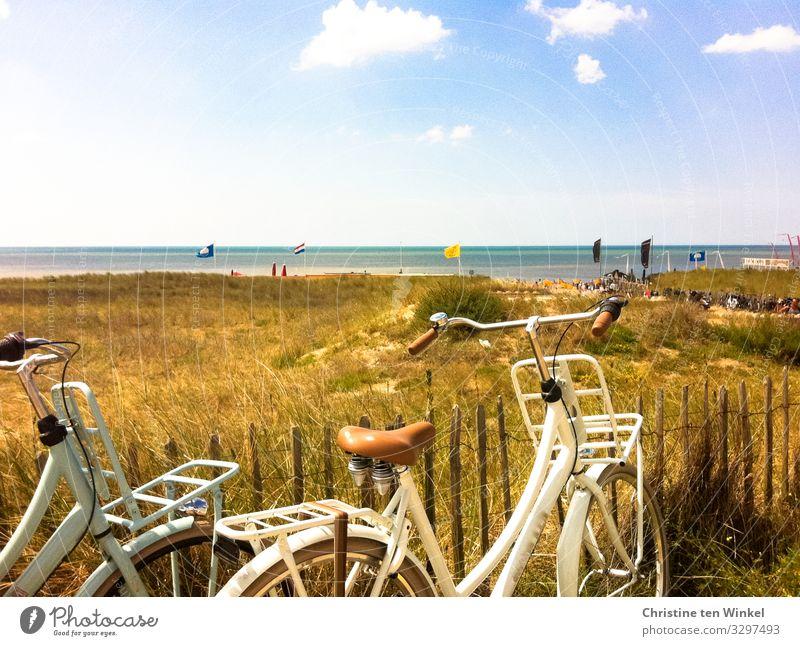 Blick auf die holländische Nordsee, im Vordergrund zwei Fahrräder und Dünen mit vertrocknetem Gras Sommer Dünengras Noordwijk Strand Niederlande Fahrradtour