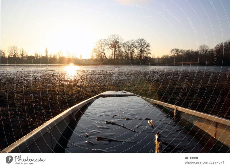 Boot am See im Winter Wasser Eis kalt Frost Außenaufnahme Natur Farbfoto Menschenleer Umwelt gefroren Landschaft Wrack vollgelaufen Tageslicht Sonnenuntergang