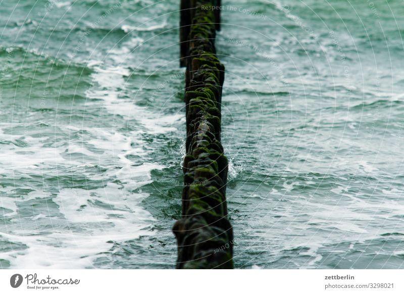 Buhnen Dorf Fischerdorf Insel Küste Landschaft Mecklenburg-Vorpommern Meer Ostsee Ostseeinsel Rügen Ferien & Urlaub & Reisen Nebensaison Wasser Wasseroberfläche