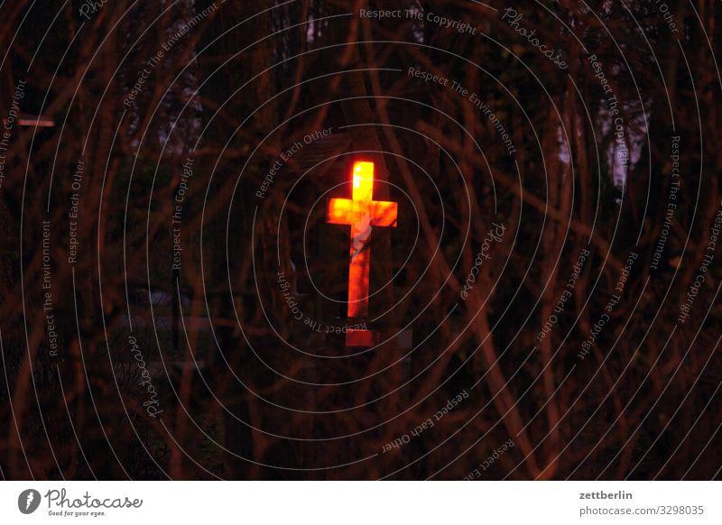 Kreuz dunkel Religion & Glaube Textfreiraum glänzend Ast Dorf Zweig Christliches Kreuz Urwald Rügen Christentum Mecklenburg-Vorpommern Friedhof Grab Unterholz