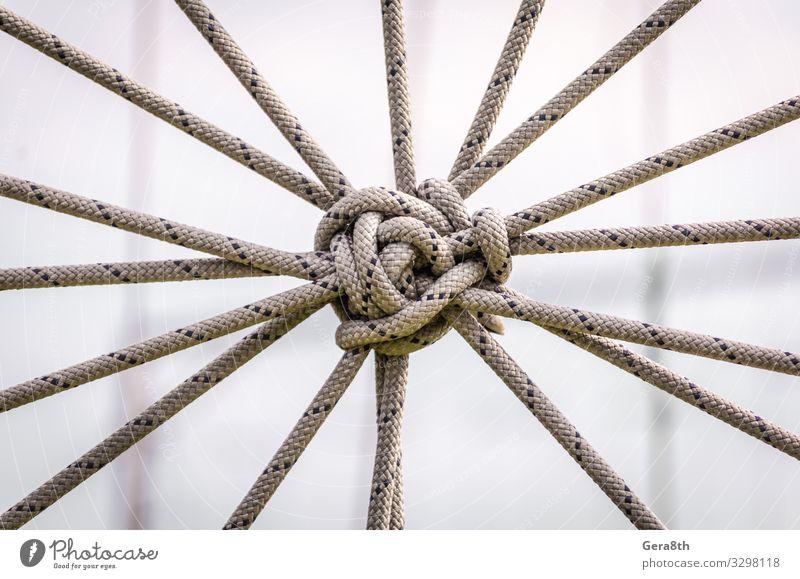 viele Seile und ein großer Knoten aus nächster Nähe Krawatte Linie Kommunizieren Kontakt Zusammenhalt abstrakter Hintergrund Zugehörigkeit Anhang Kabel