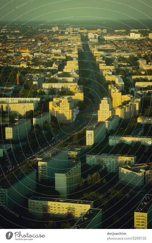 Bild einer Stadt. Berlin von oben aus dem Fernsehturm. Breite Straßen und viele Häuser. Freude harmonisch Umwelt Sommer Schönes Wetter Deutschland Hauptstadt