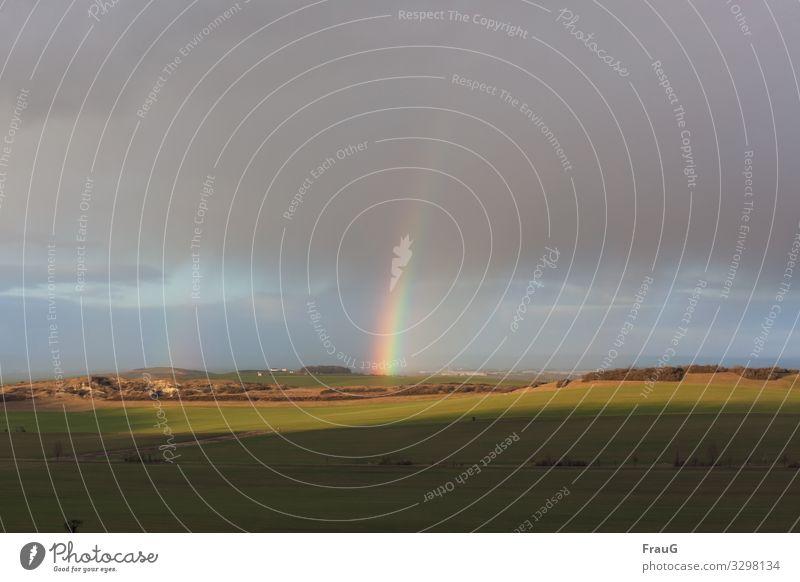 Am Ende des Regenbogens   200 Natur Landschaft Himmel Sonnenlicht Winter Wetter Feld Hügel Menschenleer leuchten Licht Schatten Spektralfarbe Farbfoto