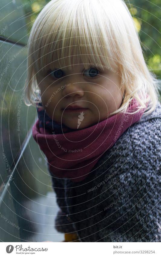 Sitzen, gucken und träumen Kindererziehung Kindergarten Mensch feminin Mädchen Kindheit 1-3 Jahre Kleinkind beobachten Blick frech niedlich Freude Zufriedenheit