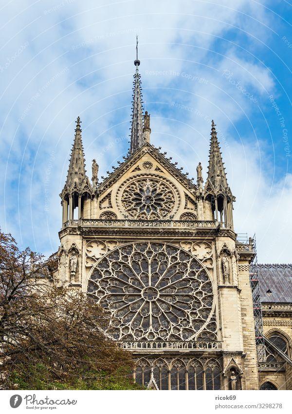 Blick auf die Kathedrale Notre-Dame in Paris, Frankreich Erholung Ferien & Urlaub & Reisen Tourismus Städtereise Haus Wolken Herbst Baum Stadt Hauptstadt