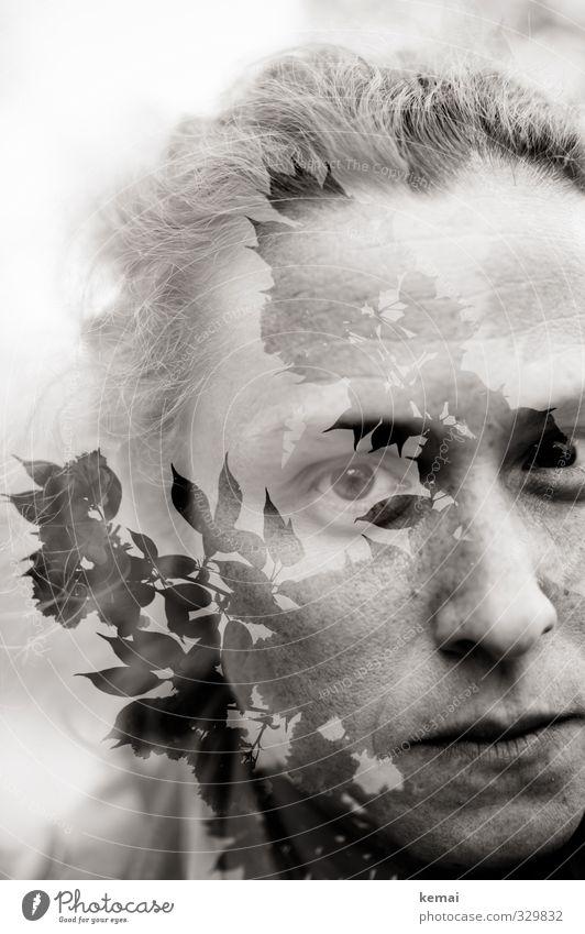 schwarzweißgrau   Kopfgewächs Mensch Frau Natur Pflanze ruhig Blatt Erwachsene Auge Leben Gefühle feminin Traurigkeit Haare & Frisuren Kopf Sträucher Mund