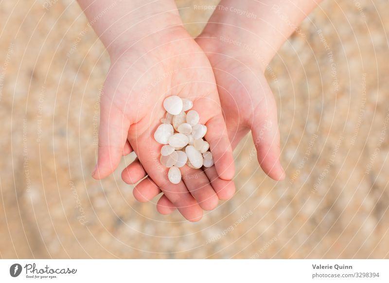 Kap-Mai-Diamanten Kind Hand 1 Mensch 3-8 Jahre Kindheit Strand Stein Sand Abenteuer Ferien & Urlaub & Reisen Halt Küste Cape-May-Diamanten Farbfoto