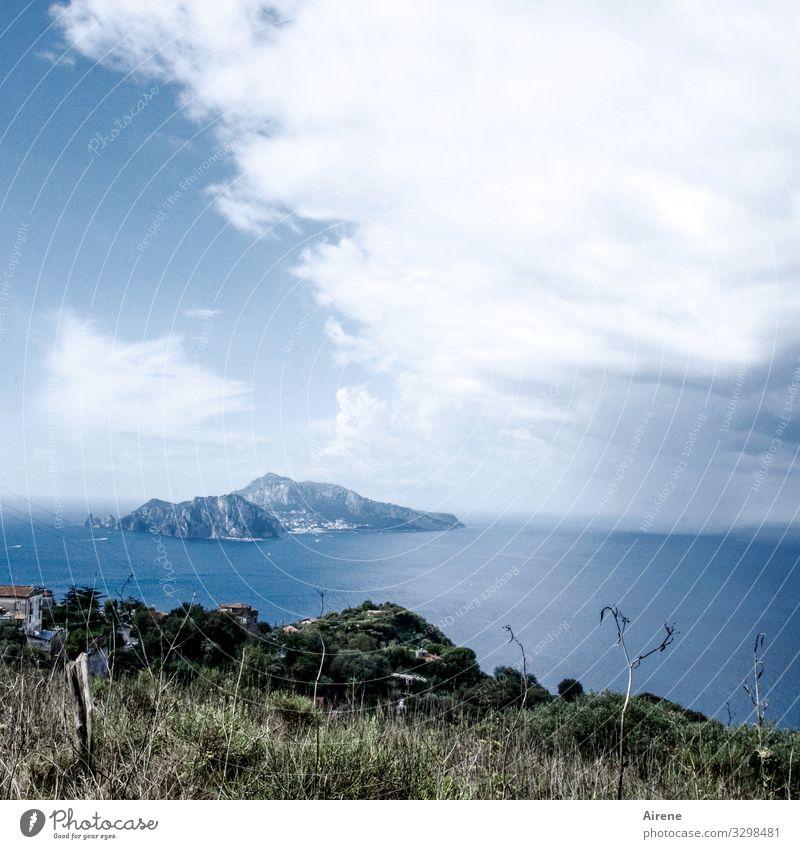 Ach, Italien! Capri Insel mediterran Sommer Sommerurlaub Meer Küste Ferien & Urlaub & Reisen Tourismus blau Tag Menschenleer Ferne Freiheit Erholung Himmel