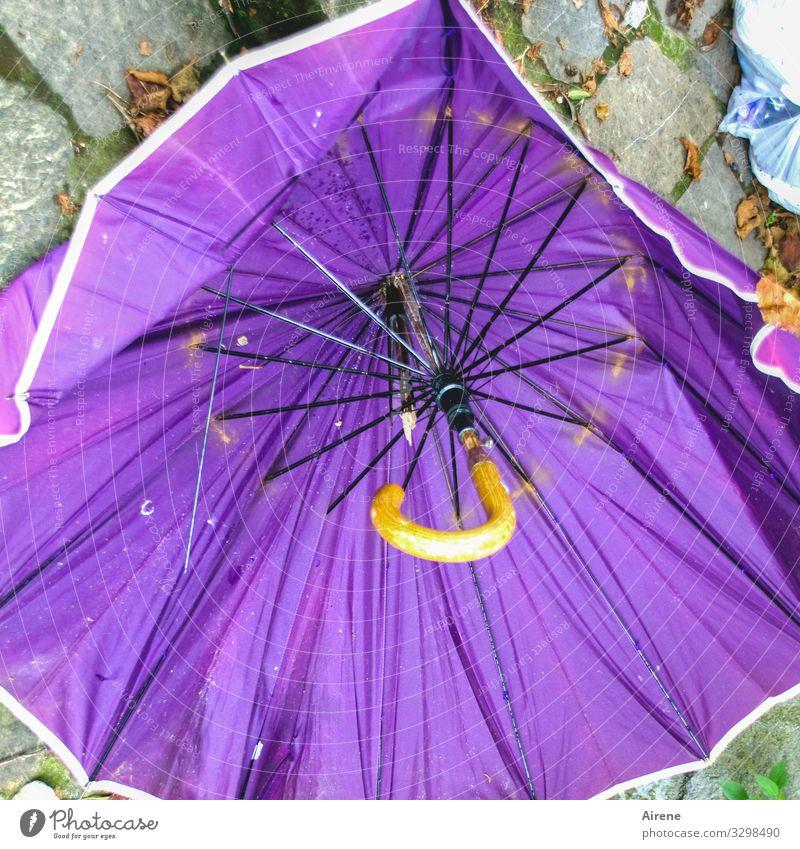 bei Wind und Regen schlechtes Wetter Sturm Regenschirm Schirm liegen alt kaputt nass violett Ärger Frustration Desaster Missgeschick Zerstörung sinnlos