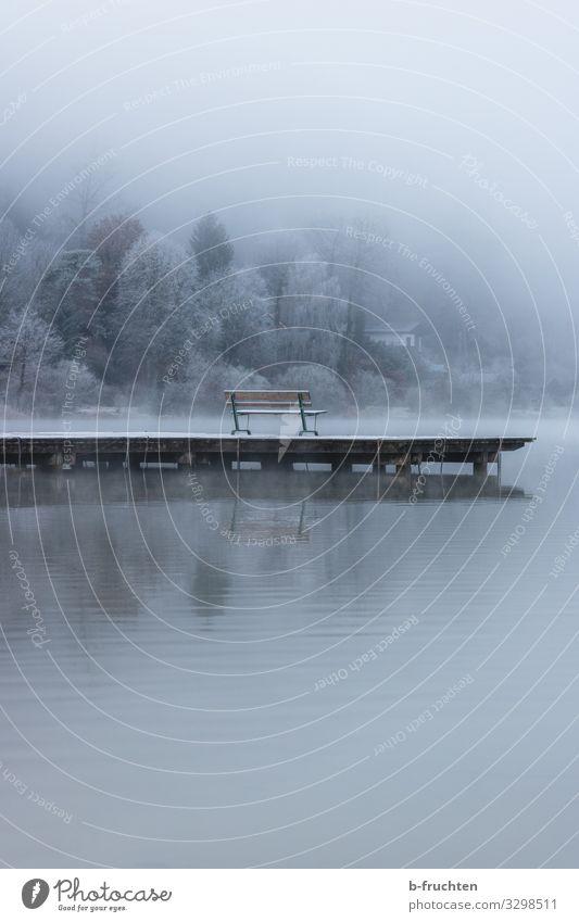 Nebel am See harmonisch Erholung ruhig Meditation Umwelt Natur Landschaft Herbst Winter schlechtes Wetter Eis Frost Seeufer genießen Blick träumen warten