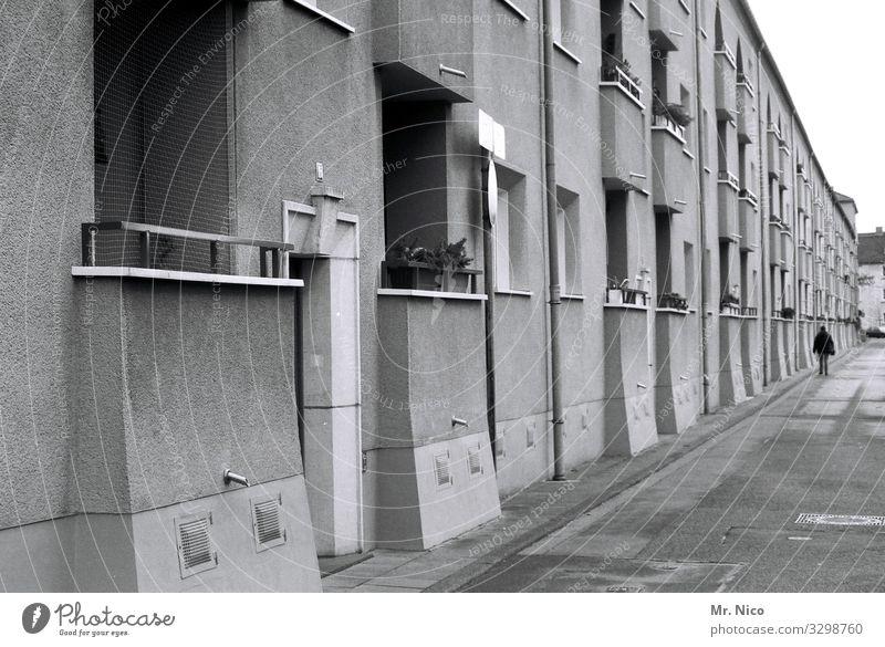 Stadtlandschaft Haus Balkon Fenster Tür Straße Wege & Pfade trist Reihenhaus Wohnsiedlung Stadtteil Wohngebiet Nachbarhaus Fassade Eingangstür Architektur