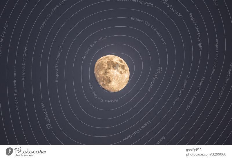 Der Mond Mondschein Himmel Nachthimmel Licht Außenaufnahme dunkel Lichterscheinung Silhouette Ferne Farbfoto Galaxie universum