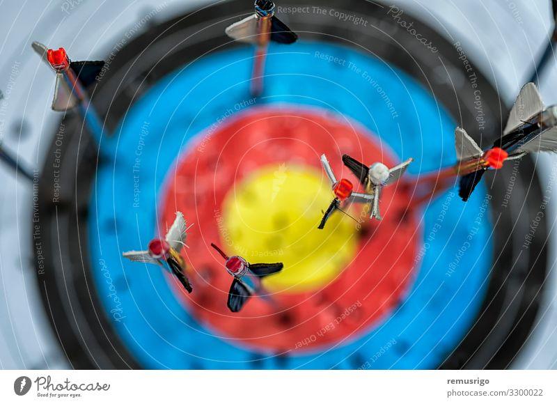 Pfeile im Ziel Jagd Werkzeug Krieg Tragflächen Bogenschütze Bogensport attackieren Schleife Jäger Fletcher Befiederung nock Objektfotografie Projektil Waffe