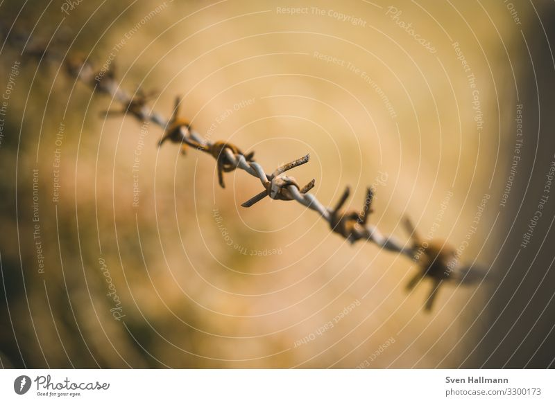 Zaun-Makro Nahaufnahme Menschenleer Winter Gitter Außenaufnahme Metall Schutz Detailaufnahme Sicherheit kalt Farbfoto Unschärfe gefangen Borte Schutzgebiet