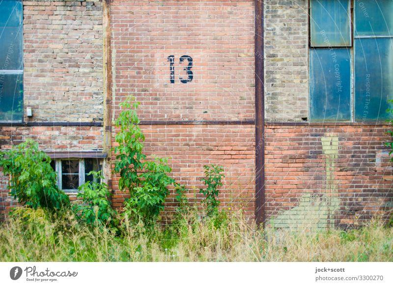 dreizehn DDR Pankow Gewerbebau Gewerbegebiet Fenster Backsteinwand Metall Rost 13 braun Verschwiegenheit Endzeitstimmung Mittelpunkt Ordnung Symmetrie