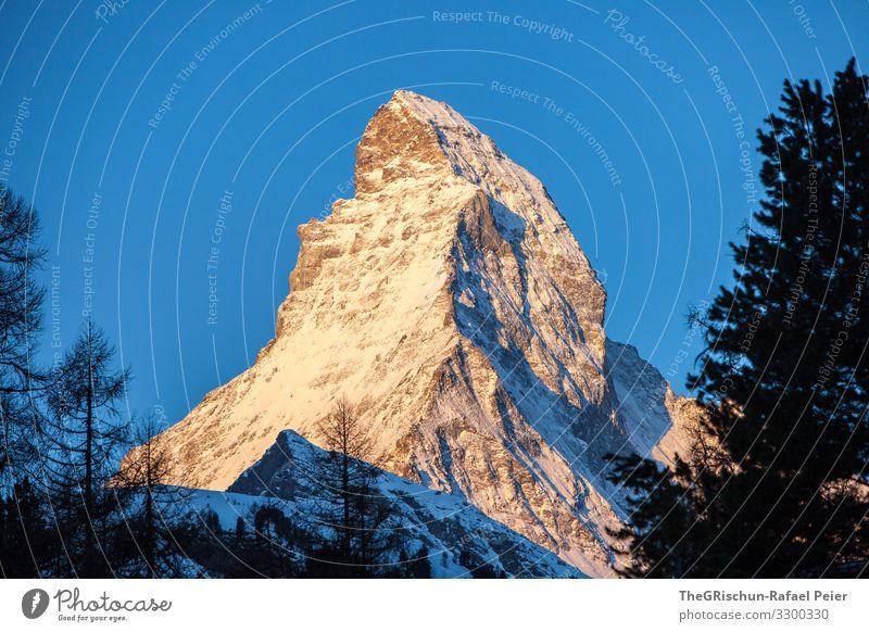 Matterhorn - s'Horu Natur ästhetisch Schweiz Tourismus geschätzt Ikonen Bekanntheit Strukturen & Formen Baum Sonnenaufgang Kanton Wallis Zermatt Schatten