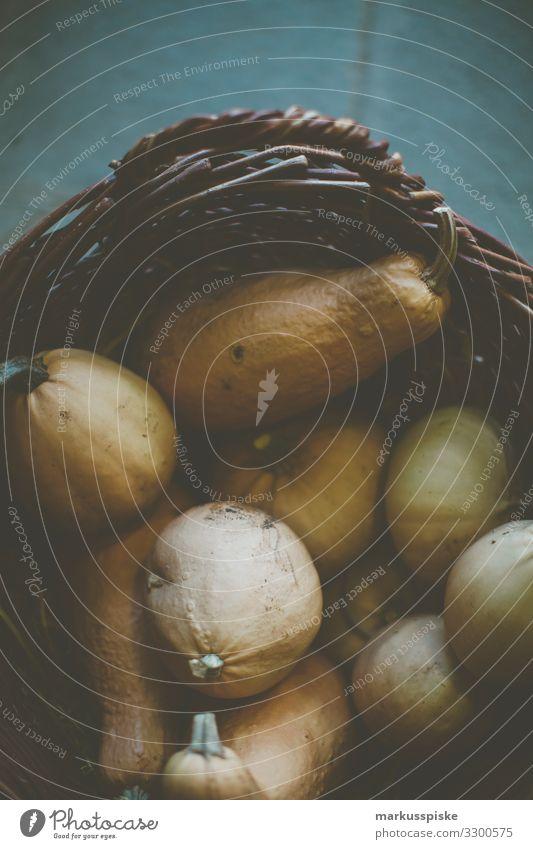 Frische Bio Kürbis Ernte Lebensmittel Gemüse Suppe Eintopf Kürbiszeit Kürbisgewächse Kürbisfeld Landwirtschaft Gemüsemarkt Gemüsehändler Gemüseladen Gemüsebau