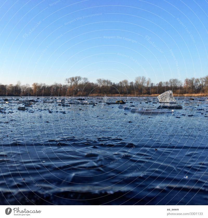 Kalter See Eis Wasser Frost Winter Außenaufnahme gefroren kalt Natur Menschenleer Farbfoto Umwelt Tag Strukturen & Formen Seeufer Himmel Oberfläche Eisfläche