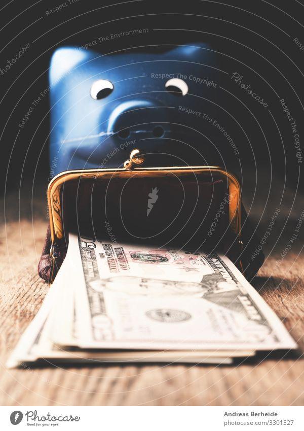 Dollar Banknoten mit einem Sparschwein Reichtum Freude Business Geld Liebe Erfolg abundance america american bank bank cards banking Geldscheine cash coin