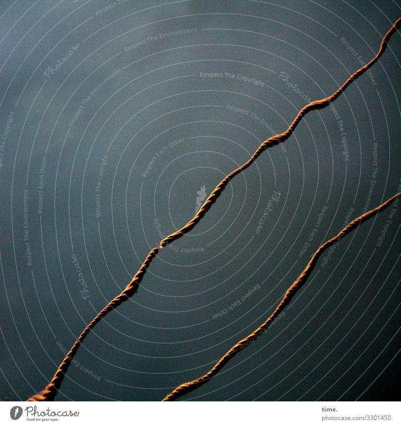 Seilschaften #17 Wasser dunkel Leben Bewegung Zusammensein Linie Kommunizieren ästhetisch Perspektive Wandel & Veränderung Neugier entdecken Streifen Team Hafen