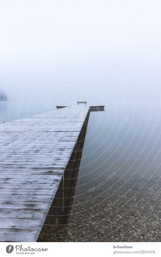 Nebelwetter harmonisch Erholung ruhig Meditation Winter schlechtes Wetter Eis Frost Seeufer Denken genießen Blick warten Hoffnung Horizont Steg Wallersee