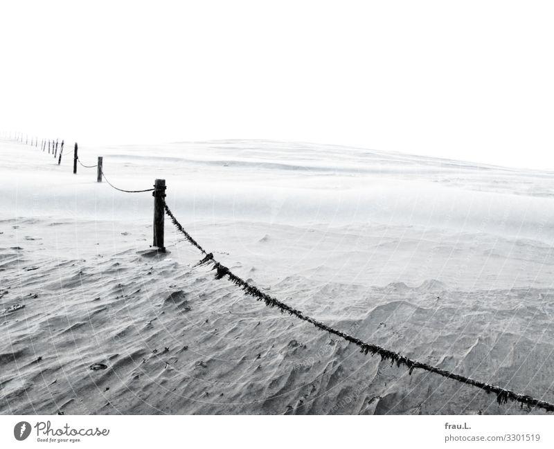 Sand Ferien & Urlaub & Reisen Tourismus Ausflug Strand Meer Winter Wind Ostsee Polen schön Einsamkeit Menschenleer Düne Nationalpark Naturschutzgebiet