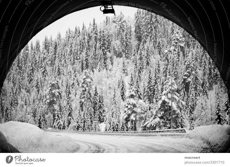 Am Ende des Tunnels Winter Schnee Landschaft Baum Berge u. Gebirge Natur Himmel weiß Abenddämmerung Frost Jahreszeiten blau gefroren schön Durchgang Norwegen